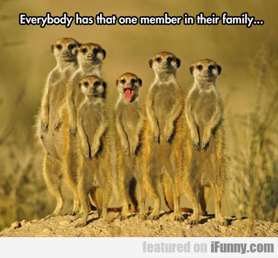 everybody has that one member...