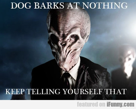 Dog Barks At Nothing...