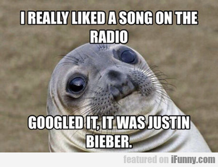 I Really Like A Song On The Radio...