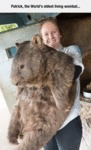 Patrick, The World's Oldest Living Wombat...