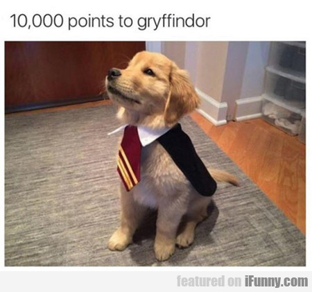 10,000 Points To Gryffindor