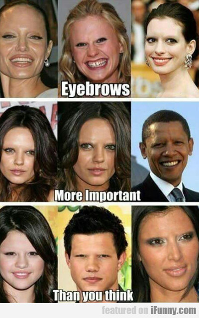 Eyebrows, More Important, Than You Think...