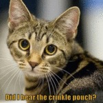 Did I Hear The Crinkle Pouch?