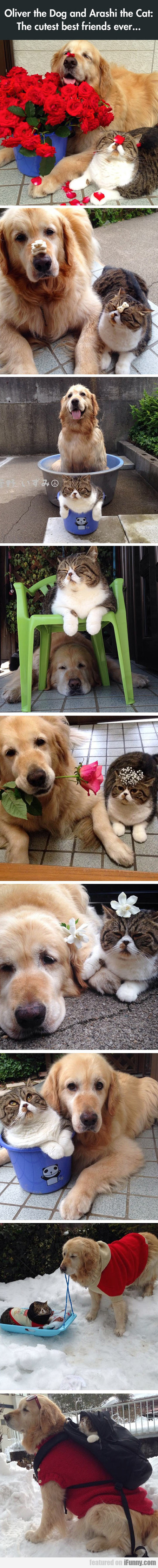 The Cutest Best Friends Ever...