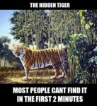 The Hidden Tiger...