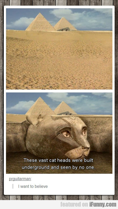 These Vast Cat Heads Were Built Underground...