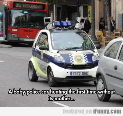 A Baby Police Car Hunting For The First Time...