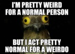 I'm Pretty Weird For A Normal Person, But I Act...