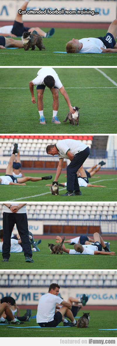 Cat Attended Football Team Training