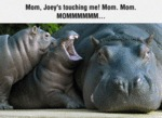 Mom Joey S Touching Me Mom Mom