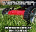 "That ""fresh Cut Grass"" Smell..."