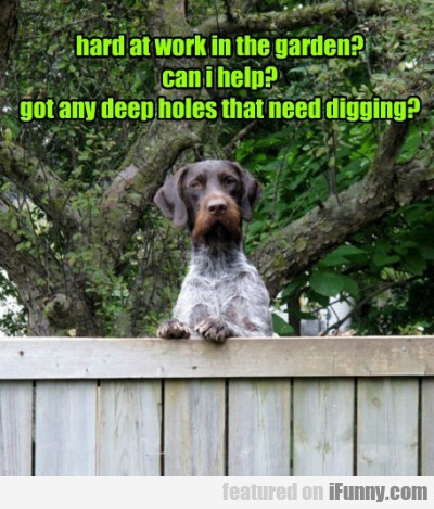 hard at work in the garden can i help
