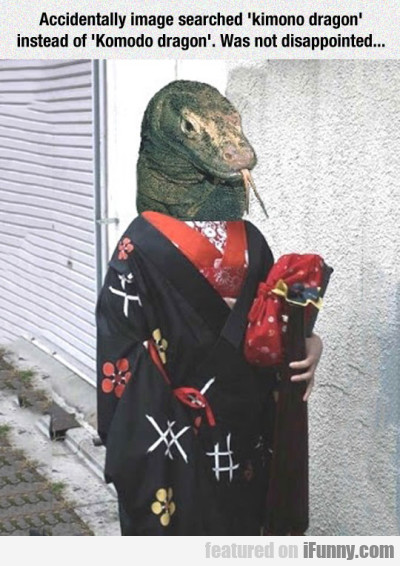 Ccidentally Image Searched Kimono Dragon