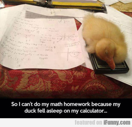 so i cant do my math homework because my uck fell