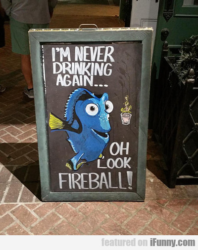 I'm Never Drinking Again, Oh Look A Fireball....