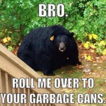 Bro, Roll Me Over To Your Garbage Can...
