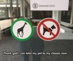 Thank God I Can Take My Pet To My Classes...