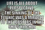 Life Is All About Perspective The Sinking