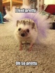 I Feel Pretty, Oh So Pretty...
