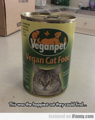 this was the happiest cat they could find...