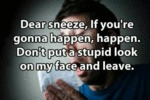 Dear Sneeze If You Re Gonna