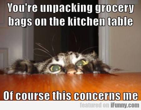 you re unpacking grocery bags