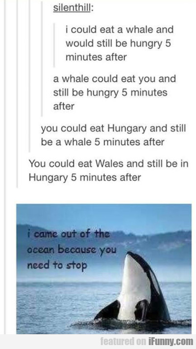 I Could Eat A Whale And Would Still Be Hungry