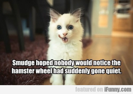 smudge hoped nobody would notice