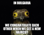 In Bulgaria, We Congratulate Each Other When...