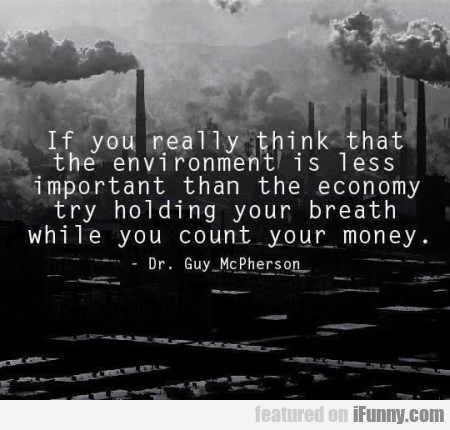 If You Really Think That The Environment