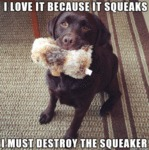 I Love It Because It Squeaks I Must Destroy