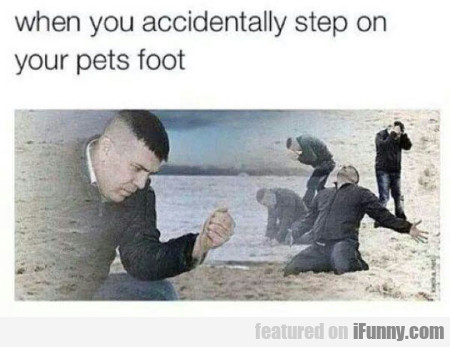 when you accidentally step on your pets