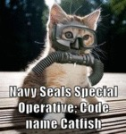 Navy Seals Special Operative