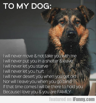 To My Dog I Will Never Move And Not Take You With