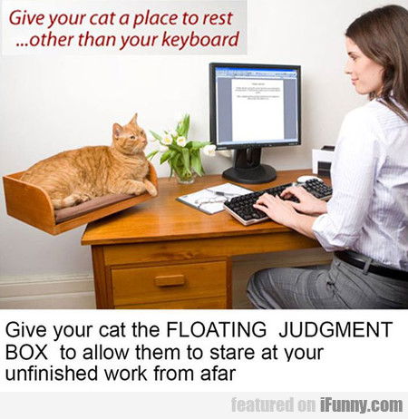 Give Your Cat A Place To Rest