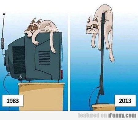 Cats Facing Technological Progress