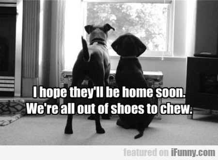 I hope they will be home soon...
