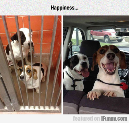 Happiness... You Can Recognize It