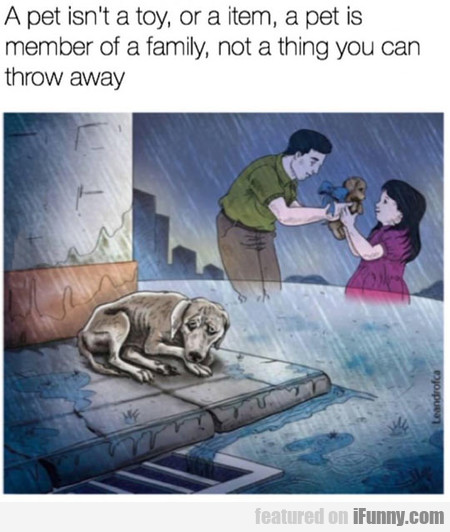 A Pet Isn't A Toy, Or A Item...
