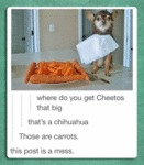Where Do You Get Cheetos That Big?