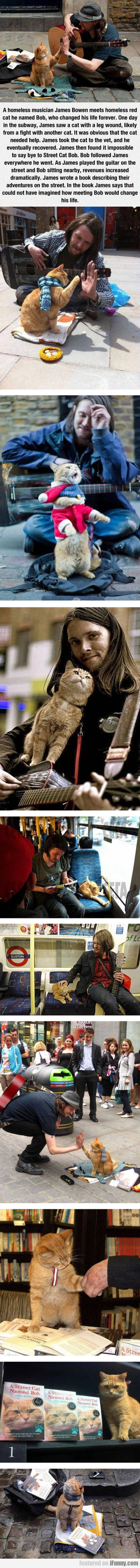 A Homeless Musician And His Cat...