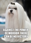 Against The Power Of Mordor...