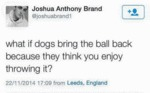 What If Dogs Bring The Ball Back...
