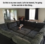 So This Is My New Couch...