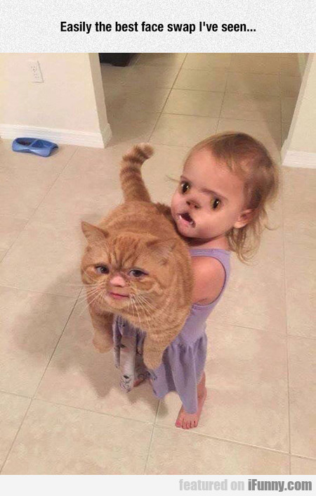 easily the best face swap i've seen...