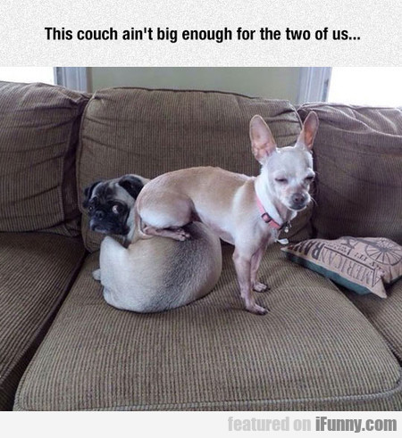 This Couch Ain't Big Enough...