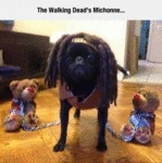 The Walking Dead's Michonne...