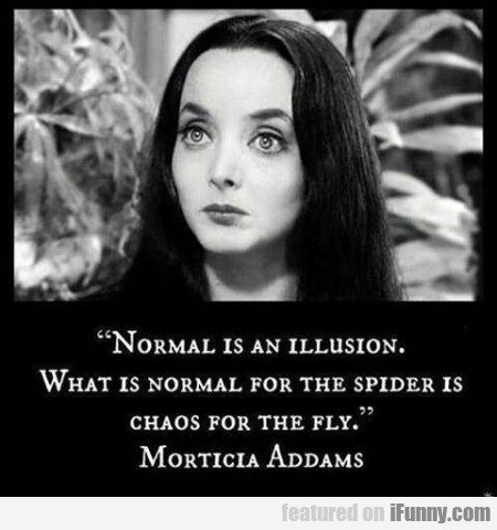 Normal Is An Illusion What Is Normal For The Spide ...
