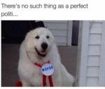 Theres No Such Thing As A Perfect Politi