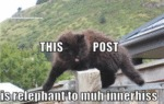 This Post Is Relephant To Muh
